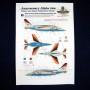 Anniversary Alpha Jets (35)
