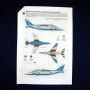 Anniversary Alpha Jets (37)