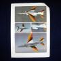 Anniversary Alpha Jets (38)