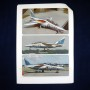 Anniversary Alpha Jets (40)