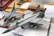 Flugzeuge MMS_2015_018
