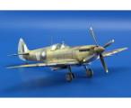 Spitfire Mk.VIII Aussie Eight (20)
