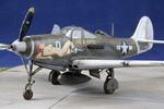 """Bell P-400 """"Air A Cutie"""" von Eduard in 1:48"""