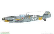 Bf 109G-6 (44)