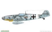 Bf 109G-6 (45)
