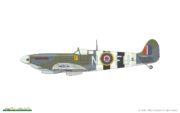 spitfire-mk-ix-royal-class-46